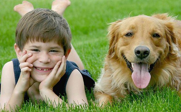 Resultado de imagen de niños y perros
