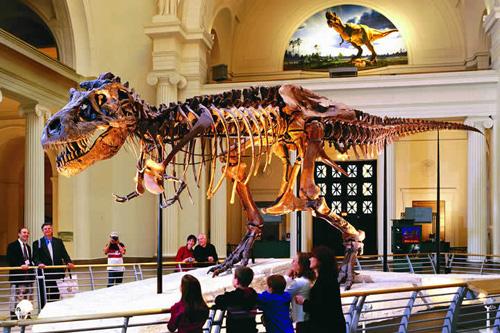 Planes para niños: visitar museos